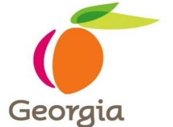 georgia long term care
