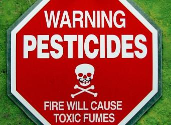 pesticide alzheimer's
